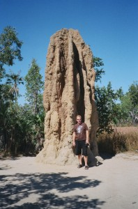 tony-cathedral-termites